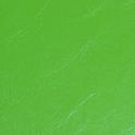 艶有レザー黄緑